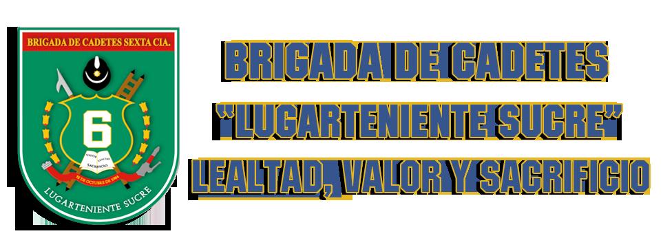 encabezado_brigada2